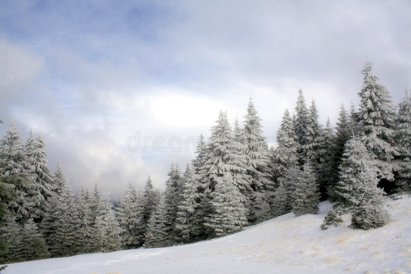 Beautiful winter day stock photography