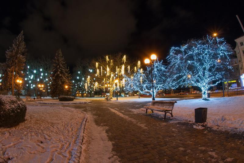 Beautiful winter evening with decorated trees stock image