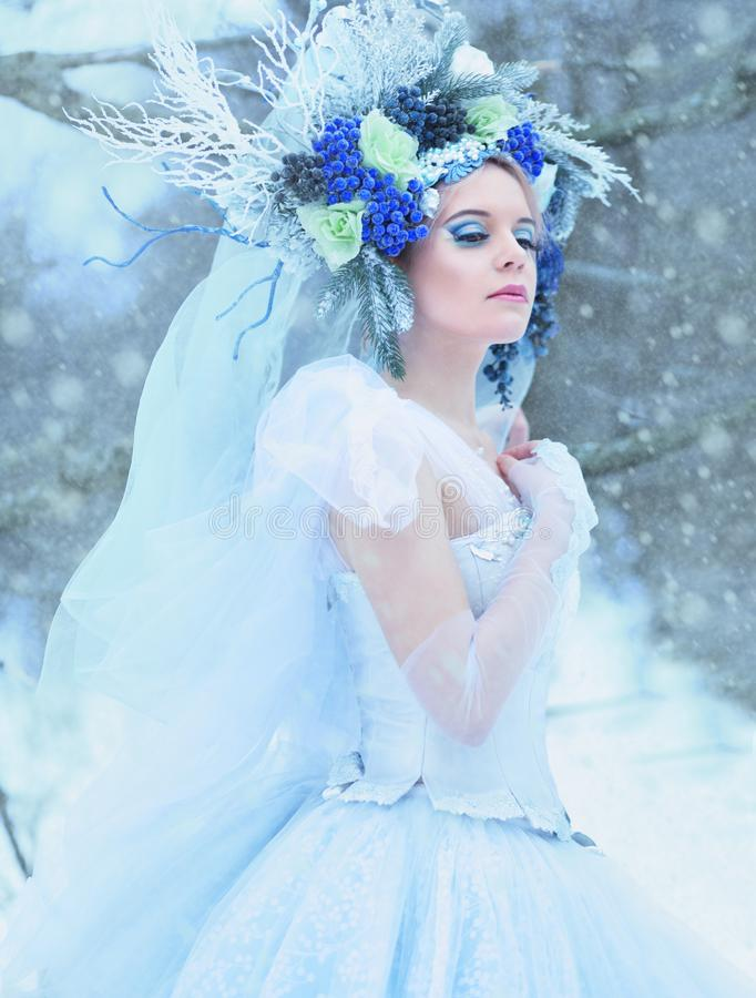 Beautiful winter fairy stock photography