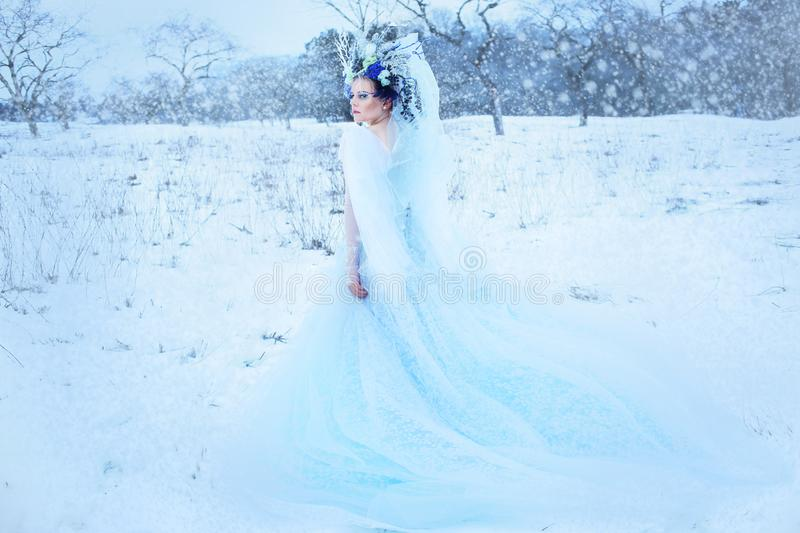 Beautiful winter fairy stock photo