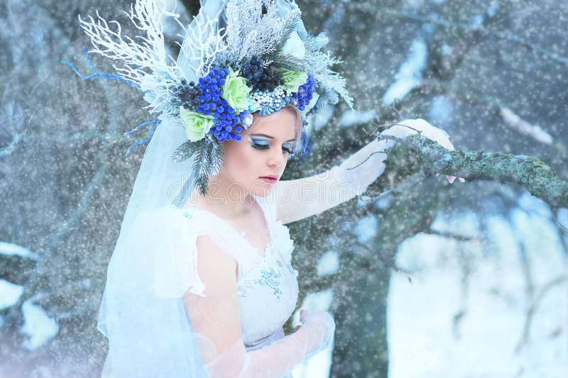 Beautiful winter fairy royalty free stock image