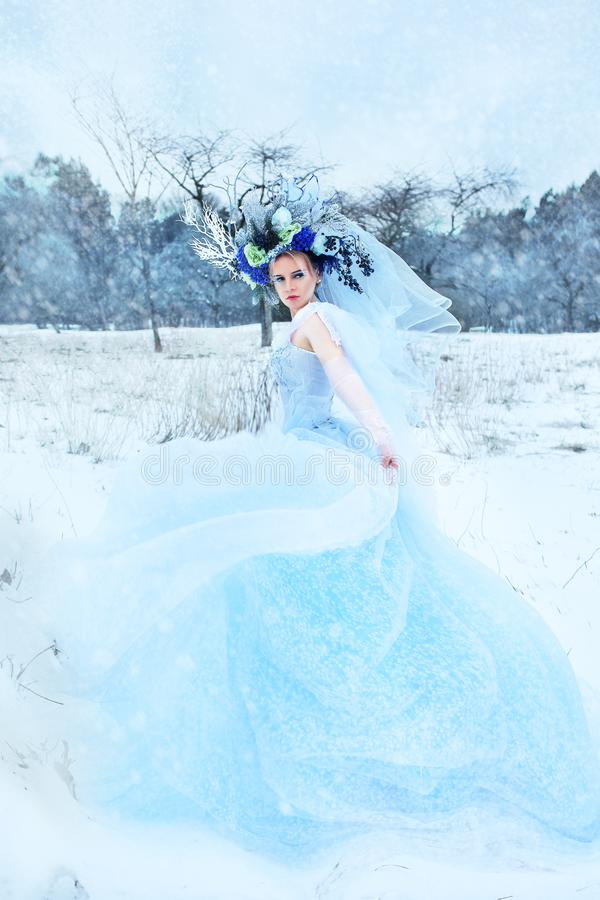 Beautiful winter fairy stock photos
