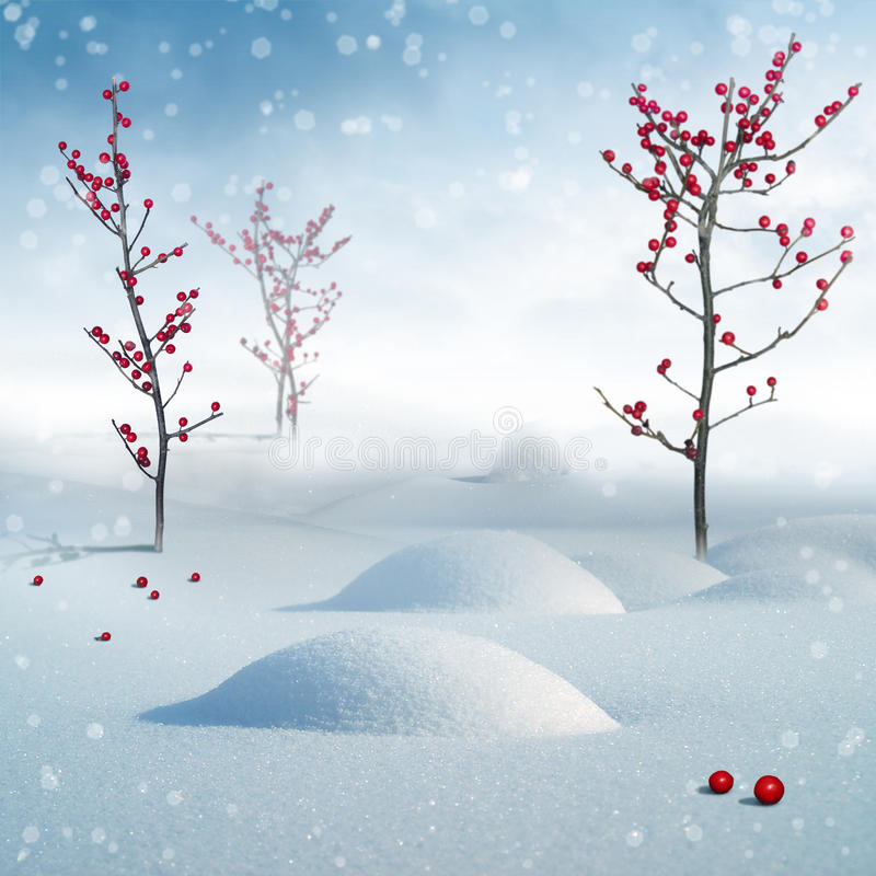 Download Beautiful winter forest stock illustration. Image of christmas - 17113116