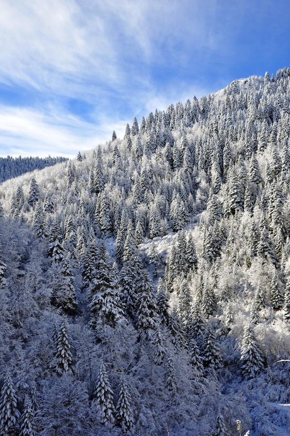 Majestic winter landscape over blue sky stock images