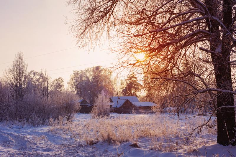 Beautiful winter landscape at sunset. The beautiful winter landscape at sunset royalty free stock photography
