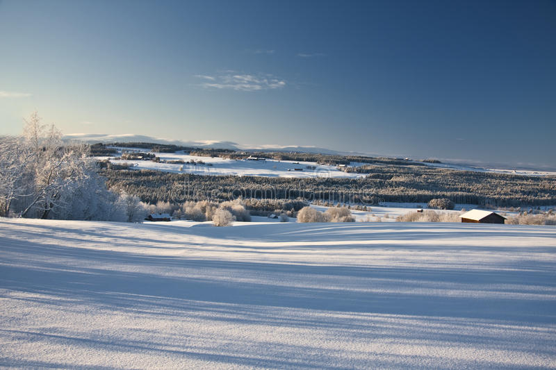 Download Beautiful winter landscape stock image. Image of branch - 16801221