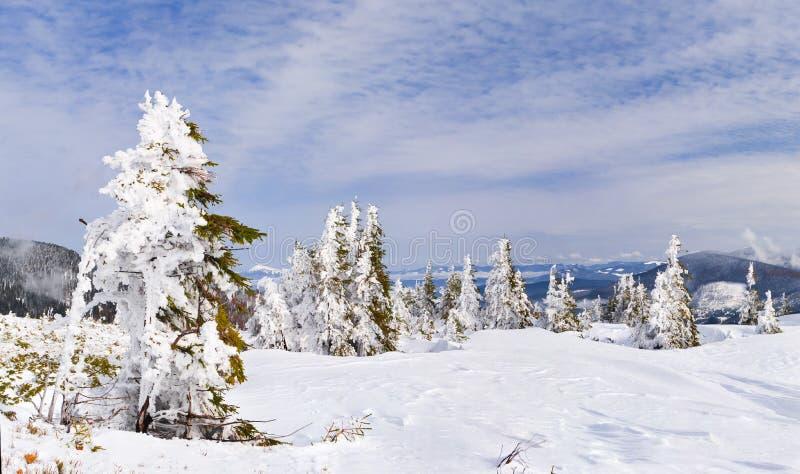 Download Beautiful winter landscape stock photo. Image of season - 21987700