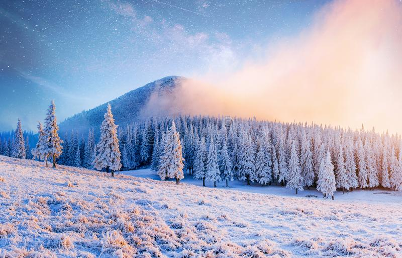 Beautiful winter landscape in the Carpathian mountains. Vibrant night sky with stars and nebula and galaxy. Deep sky royalty free stock photos