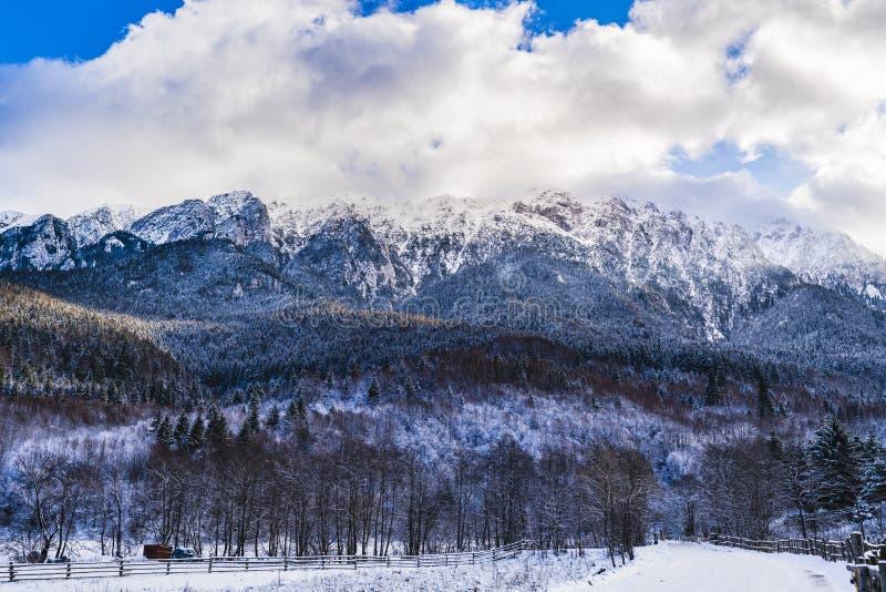 Winter landscape with Carpati Piatra Craiului mountain. Beautiful winter landscape with Carpati Piatra Craiului mountains in Romania royalty free stock photos