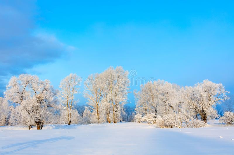 Winter landscape. Cold day. Beautiful winter landscape. Cold day stock photo