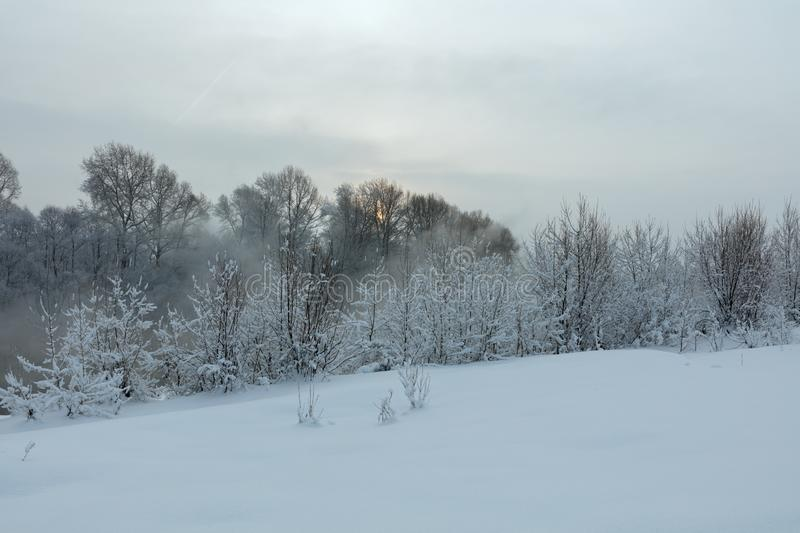 Winter landscape. Cold day royalty free stock photo