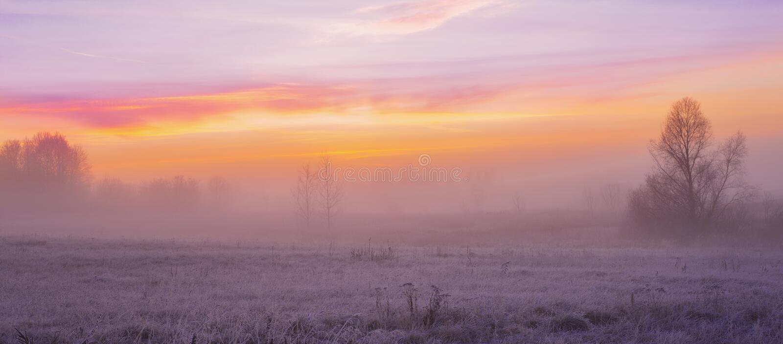 Beautiful winter landscape with fog. And frost stock photography