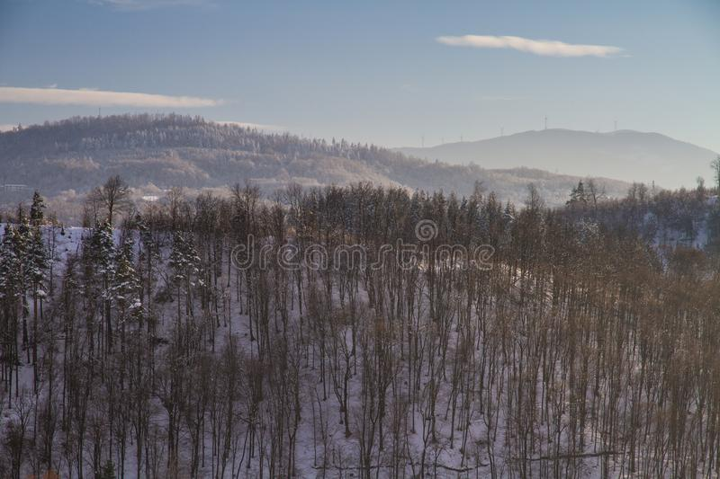 Beautiful winter landscape in the forest royalty free stock images