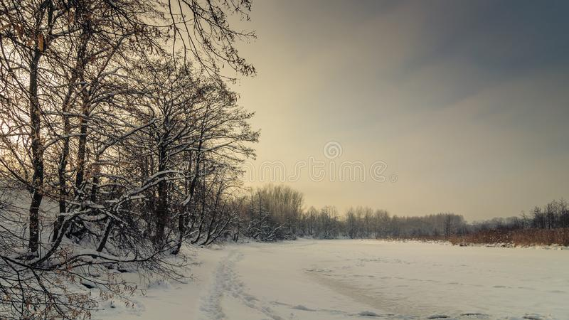 winter landscape. Frozen snowy river with coastal trees in the warm sunset light stock photography