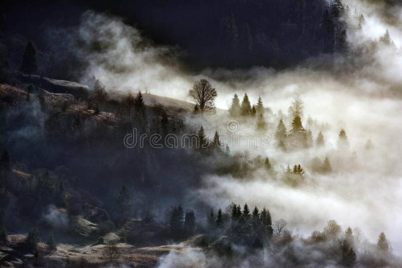 Beautiful winter landscape in the mountains stock image