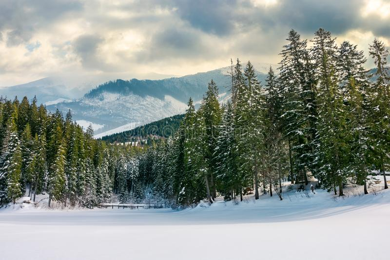 beautiful winter landscape in mountains royalty free stock photo