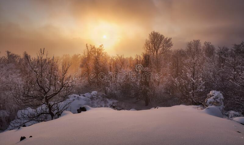 Beautiful winter landscape in the mountains. Sunrise stock image