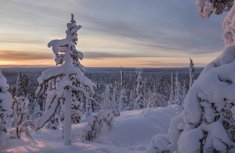 Beautiful winter landscape from Northern Finland stock photo