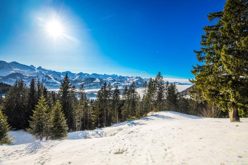 Beautiful winter landscape panorama. Swiss Alps covered by snow in Ibergeregg, Switzerland, Europe. stock photography