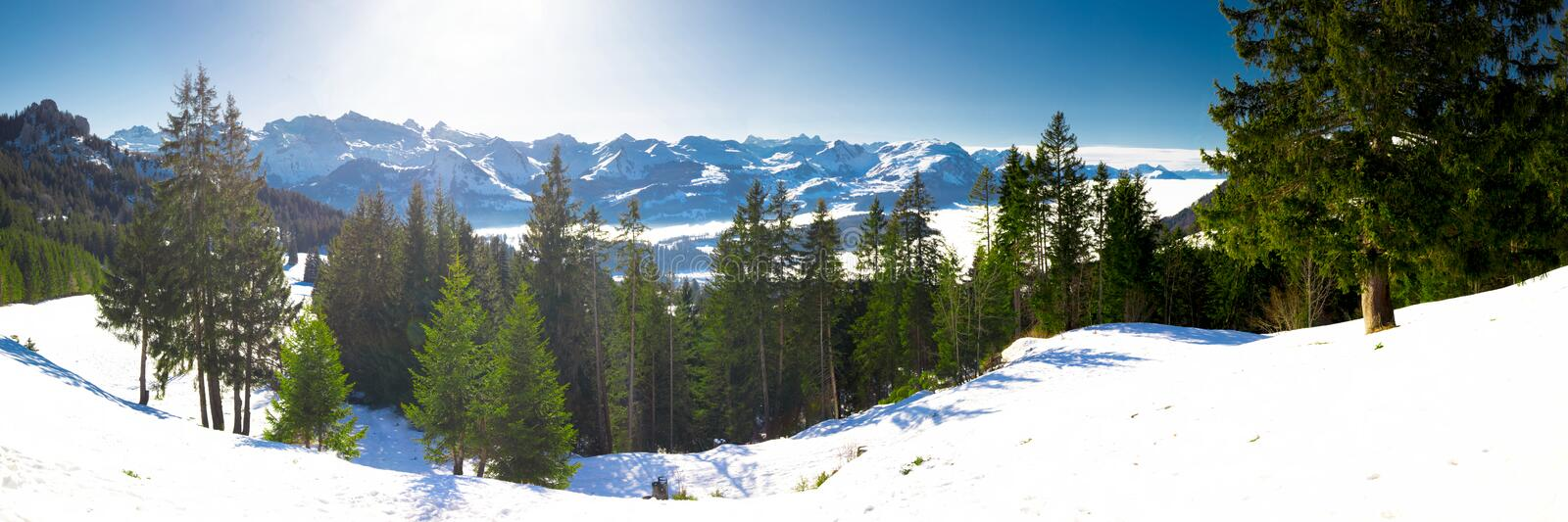 Beautiful winter landscape panorama. Swiss Alps covered by snow in Ibergeregg, Switzerland, Europe. royalty free stock photography