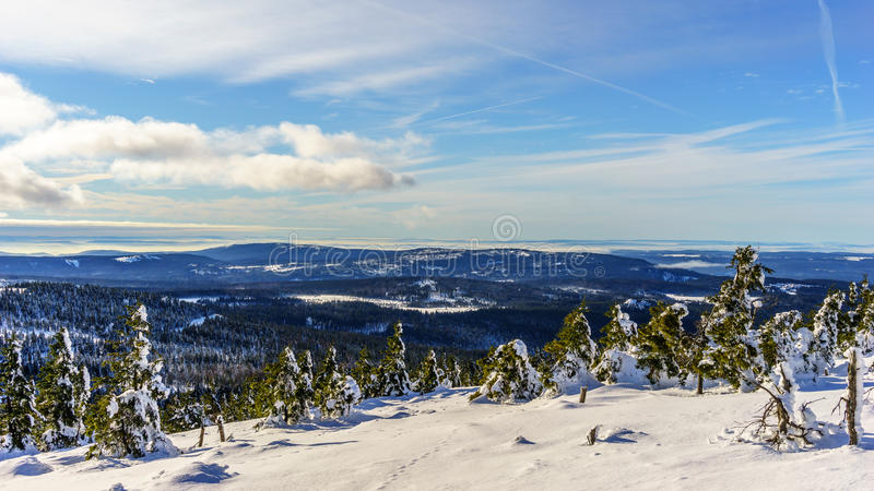 Beautiful winter landscape. Winter landscape shot in the Harz Germany stock image