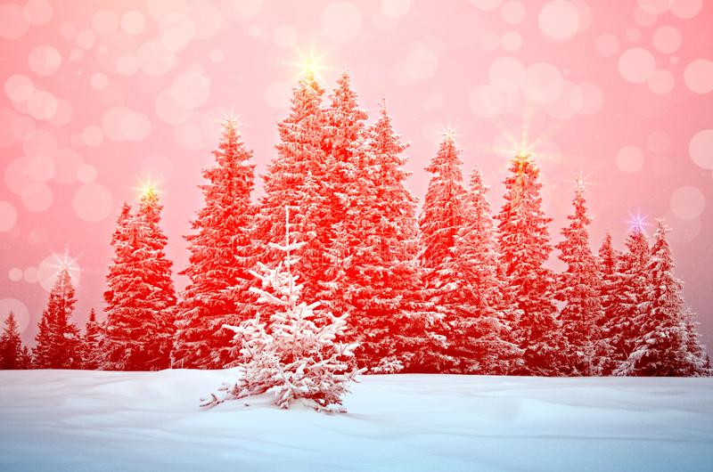 Beautiful New Year Landscape with Christmas Trees in New Year`s Illuminations During Snowfall stock photo