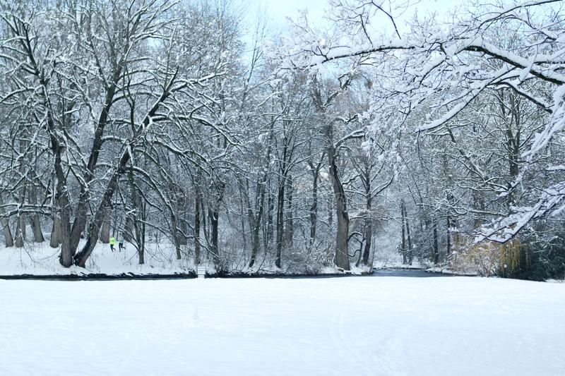 Beautiful winter landscape of snowy nature in a park across the river, two athletes run away in the distance across the river. Among the trees in the background royalty free stock image
