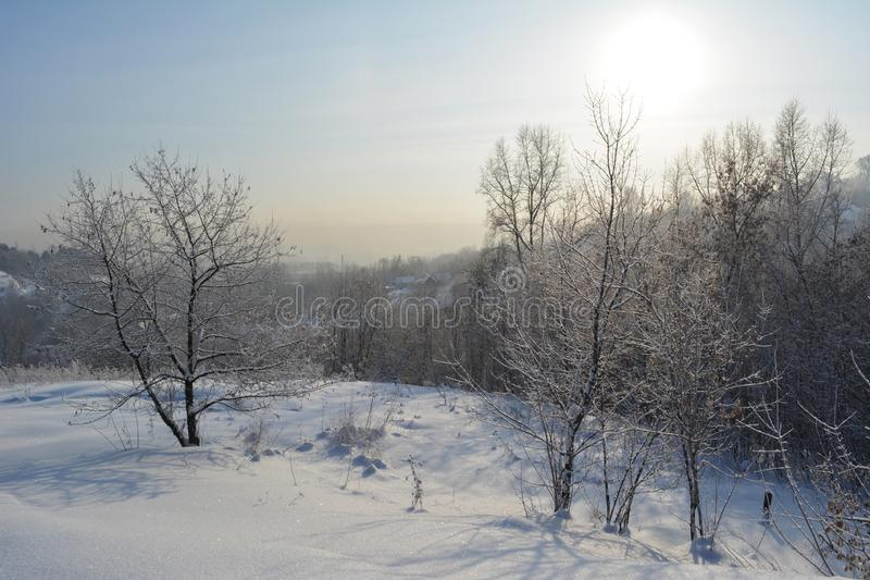Beautiful winter landscape with snowy trees in sunny frosty day stock photo