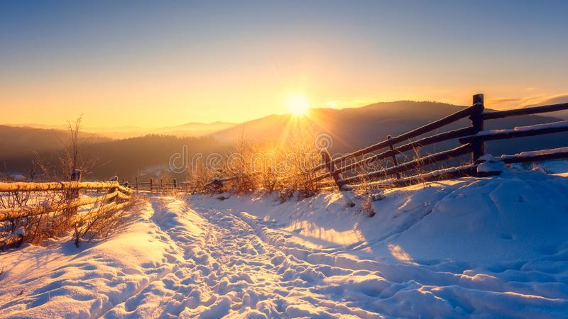Beautiful winter mountain landscape in soft sunset light, frosted trees along the snowy path royalty free stock images