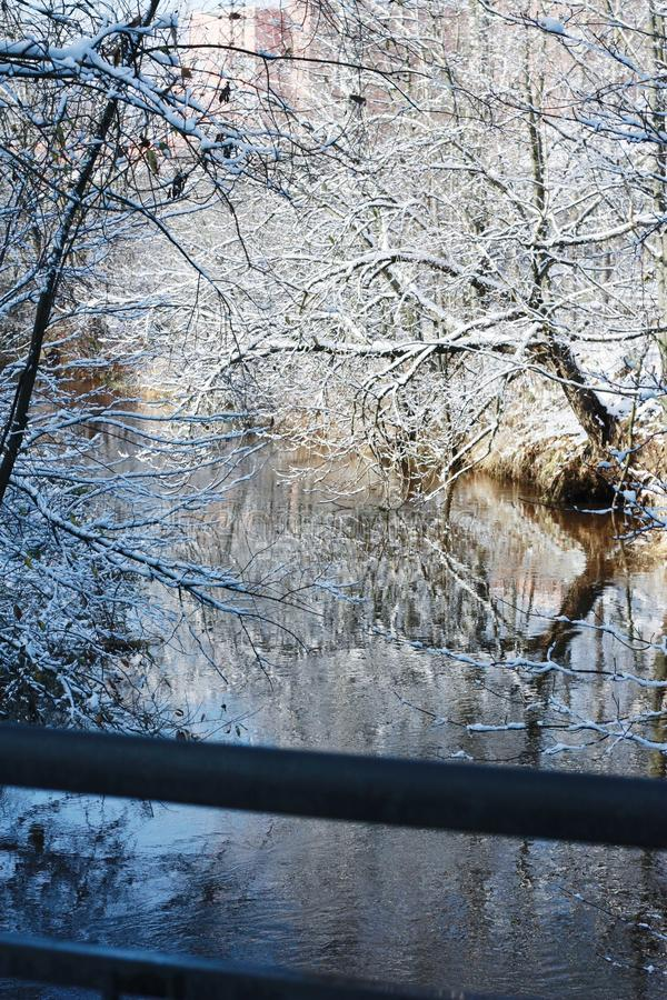 Beautiful winter landscape trees snow and river stock photos
