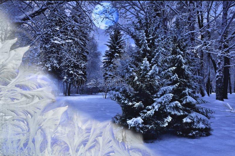 Beautiful winter landscape under the frosty windows glass stock image