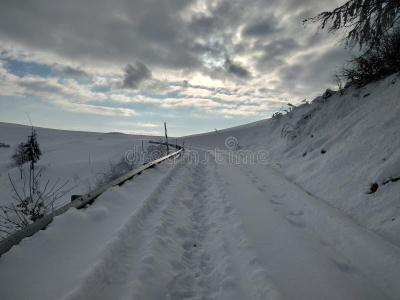 Beautiful winter landscapes with mountains and snow-laden trees in the village of Parva, Romania, Transylvania. Foto tomada en Enero 2019, en pueblo de parva royalty free stock photos