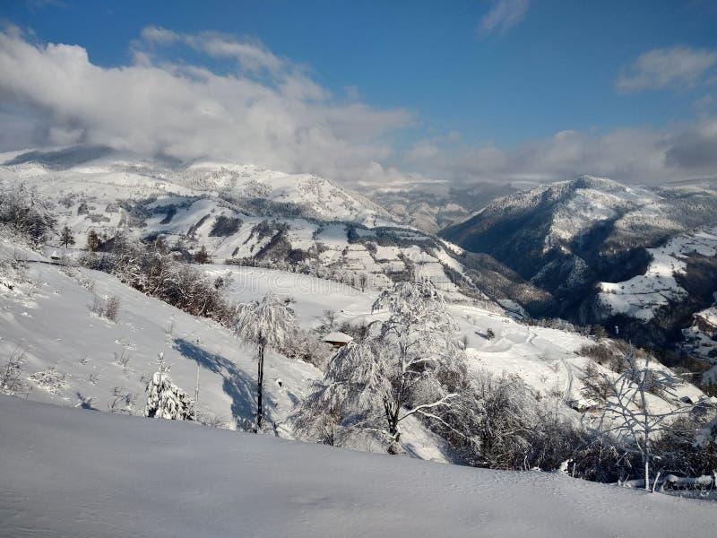 Beautiful winter landscapes with mountains and snow-laden trees in the village of Parva, Romania, Transylvania. Foto tomada en Enero 2019, en pueblo de parva royalty free stock photo