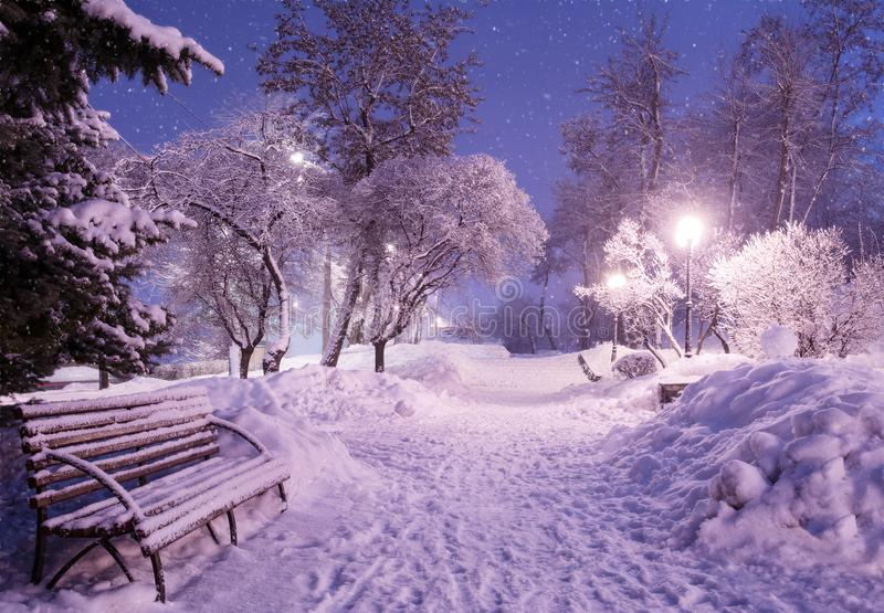 Beautiful winter night landscape of snow covered bench among snowy trees and shining lights during the snowfall. Artistic picture royalty free stock photos