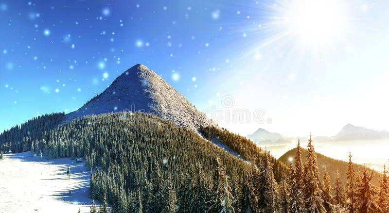 Beautiful winter panorama with fresh falling snow. Landscape wit. H spruce pine trees, blue sky with sun light and high Carpathian mountains on background stock photos