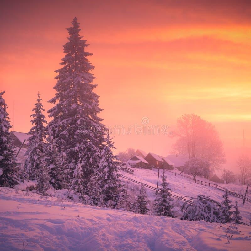 Beautiful winter sunrise in ukrainian village royalty free stock photos