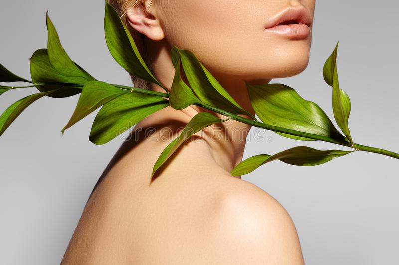 Beautiful woman applies Organic Cosmetic. Spa and Wellness. Model with Clean Skin. Healthcare. Picture with leaf. On grey background stock photo