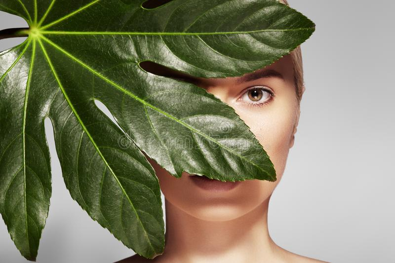 Beautiful woman applies Organic Cosmetic. Spa and Wellness. Model with Clean Skin. Healthcare. Picture with leaf. Beautiful woman applies Organic Cosmetic and royalty free stock photo