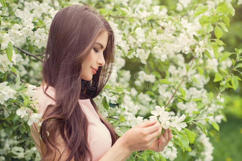 Beautiful woman with brown hair holding spring apple flowers royalty free stock image