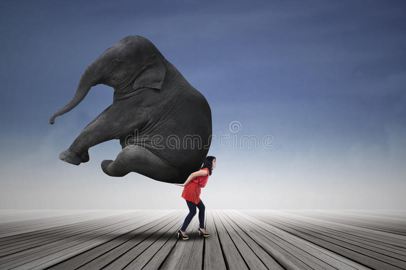 Download Beautiful Woman Carrying Elephant Stock Photo - Image: 47141699