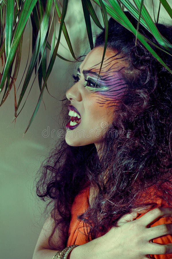 Beautiful woman with creative tiger style make-up stock image