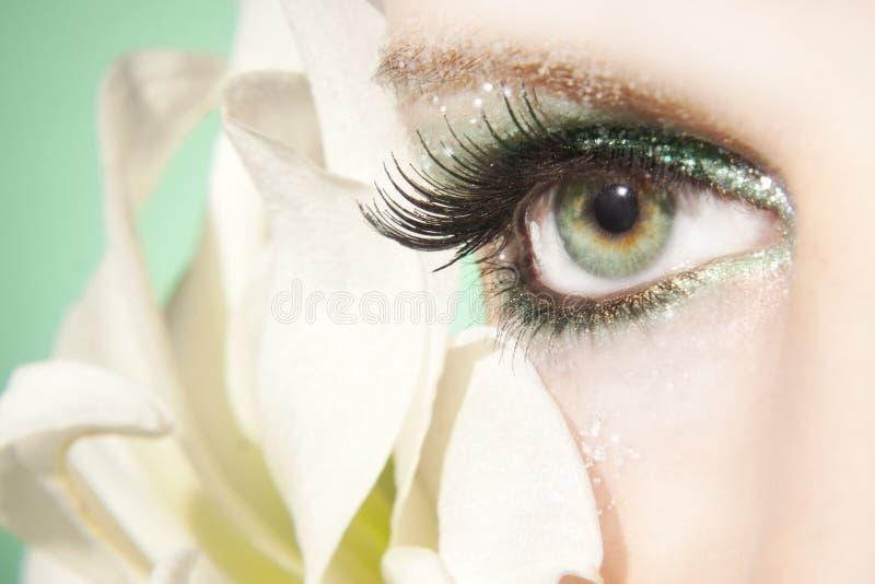 Beautiful woman eye. Close up stock photography