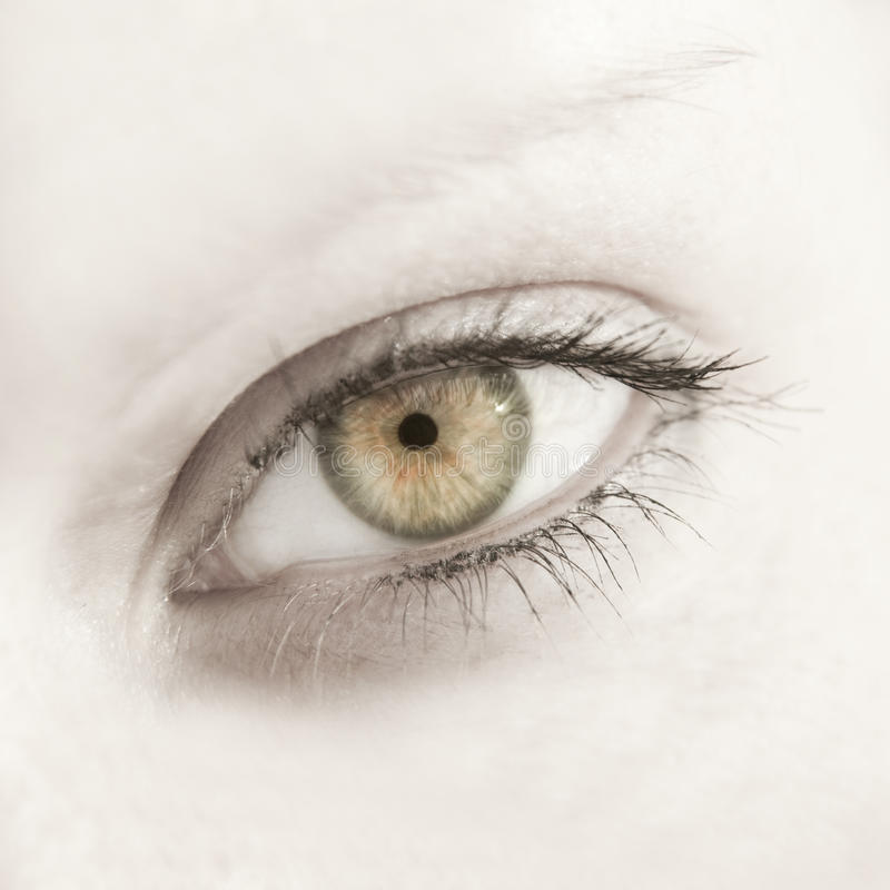 Beautiful woman eye close up. With long eyelashes royalty free stock photography