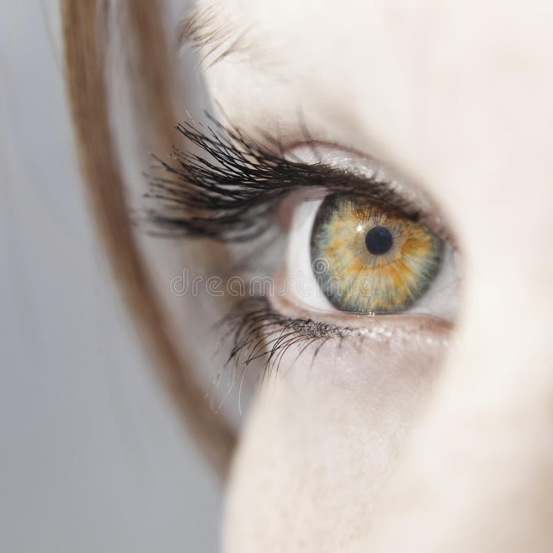 Beautiful woman eye close up. With long lashes and colorful iris royalty free stock photo