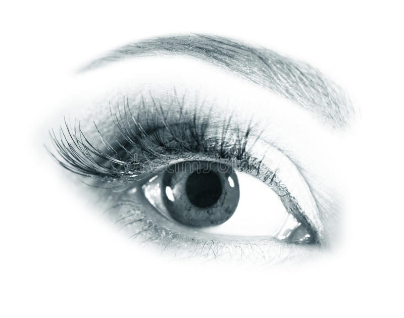 Beautiful woman eyes stock image