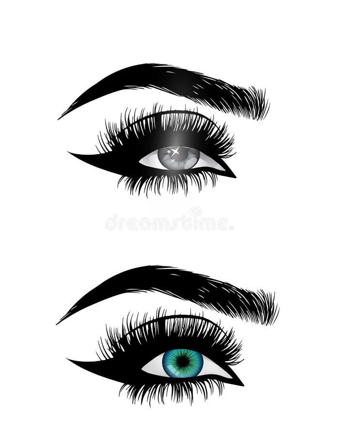 Beautiful woman eyes close-up, thick long eyelashes, black and white vector stock illustration