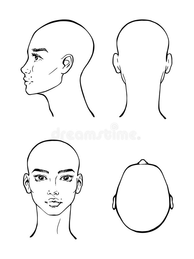 Beautiful woman face, black and white, vector, illustration. Beautiful woman face, black and white vector illustration