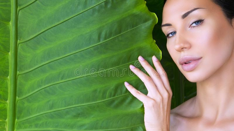 Beautiful Woman face with Natural nude make-up on a tropical lea stock photos