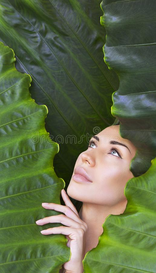 Beautiful Woman face with Natural nude make-up on a tropical leaf background. Healthy life. Purity. Young woman`s face surrounded by tropical leaves. Woman face royalty free stock photo