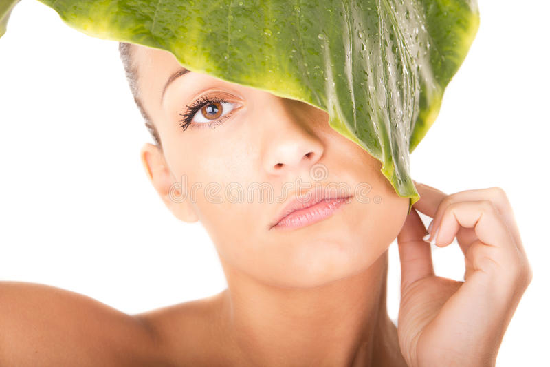 Beautiful woman face portrait with green leaf stock photos